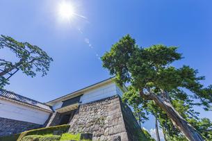 小田原城本丸の正門 常盤木門と松の木の写真素材 [FYI04911045]