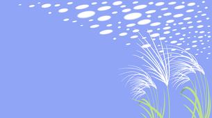ススキと爽やかな秋の空の鱗雲のイラスト素材 [FYI04911101]
