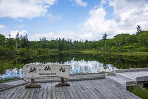 神仙沼自然休養林の神仙沼の写真素材 [FYI04911172]