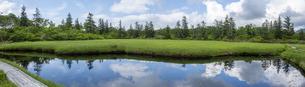 神仙沼自然休養林の湿地の写真素材 [FYI04911173]