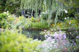 花のある庭園の写真素材 [FYI04911694]