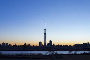 東京の夕方の写真素材 [FYI04911701]