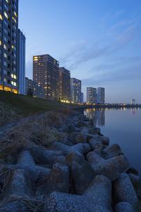 テトラポットのある川岸の風景の写真素材 [FYI04911704]