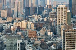 東京のビル群の写真素材 [FYI04911708]