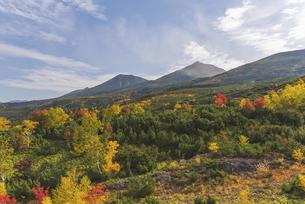 大雪山・望岳台からの秋景色の写真素材 [FYI04911827]