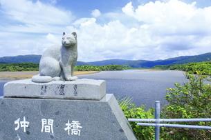仲間川と仲間橋のイリオモテヤマネコのオブジェの写真素材 [FYI04912032]