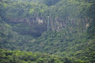 世界遺産西表島のピナイサーラの滝の写真素材 [FYI04912036]