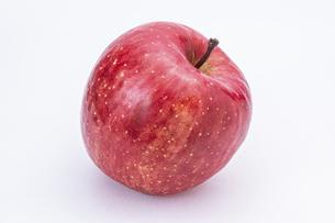 【果物】ヘタがついた赤いリンゴ の写真素材 [FYI04912446]