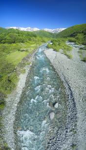 松川の清流と新緑の白馬連峰の写真素材 [FYI04912569]
