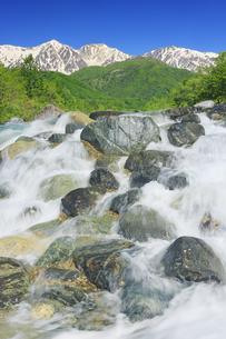 松川の清流と新緑の白馬連峰の写真素材 [FYI04912570]