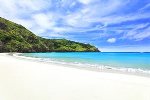 小笠原国立公園 父島の小港海岸のビーチの写真素材 [FYI04912807]