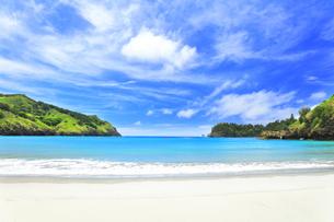 小笠原国立公園 父島の小港海岸のビーチの写真素材 [FYI04912808]