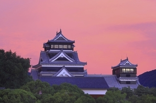 朝焼けの熊本城の写真素材 [FYI04912853]