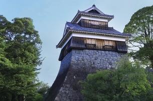 熊本城 未申櫓の写真素材 [FYI04912862]