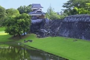 熊本城 馬具櫓と地震被害の長塀の写真素材 [FYI04912863]
