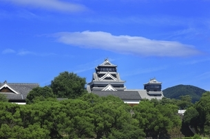 熊本城 天守閣の写真素材 [FYI04912870]