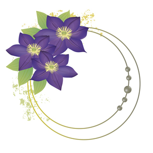 クレマチスの花のイラストフレームのイラスト素材 [FYI04913453]