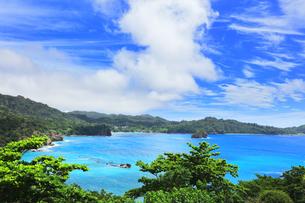 小笠原国立公園 父島の境浦に座礁船の濱江丸の写真素材 [FYI04913926]