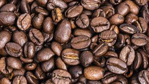 【カフェ】コーヒー豆 背景素材の写真素材 [FYI04914164]