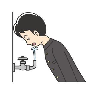 水道の水を飲む男子高校生のイラスト素材 [FYI04914173]