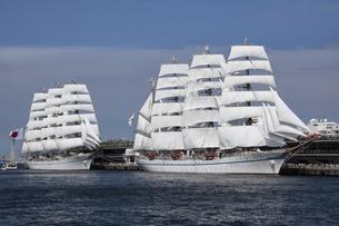 大桟橋の日本丸と海王丸の写真素材 [FYI04914355]