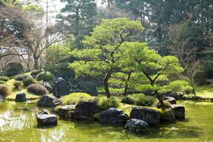 京都城南宮の庭園の写真素材 [FYI04914375]