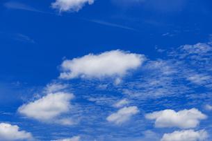梅雨の青空と浮雲の写真素材 [FYI04914672]