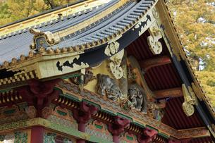 日光 東照宮 三神庫 想像の象の写真素材 [FYI04915112]
