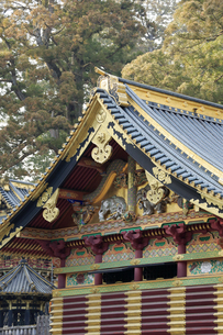 日光 東照宮 三神庫 想像の象の写真素材 [FYI04915118]