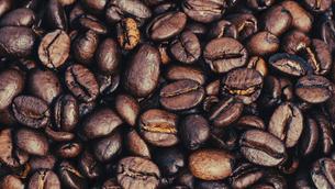 【カフェ】コーヒー豆 背景素材の写真素材 [FYI04915272]