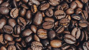 【カフェ】たくさんのコーヒー豆 背景素材の写真素材 [FYI04915273]
