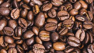 【カフェ】コーヒー豆 背景素材の写真素材 [FYI04915274]