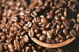 コーヒー豆の写真素材 [FYI04915298]