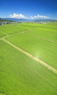 八木沢から望む塩田平の田園とれいんどりーむ号と浅間山遠望の写真素材 [FYI04915353]