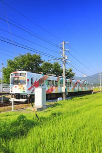 朝の舞田駅に停車するれいんどりーむ号の写真素材 [FYI04915369]
