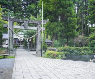 熊本県 高森町  風景 白川水源 白川吉見神社の写真素材 [FYI04915979]