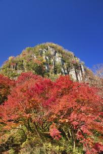 秋の耶馬渓 深耶馬渓の写真素材 [FYI04916337]