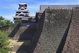 熊本城 大天守と二様の石垣の写真素材 [FYI04916398]