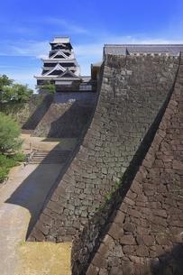 熊本城 大天守と二様の石垣の写真素材 [FYI04916400]
