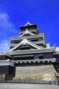 熊本城 大天守の写真素材 [FYI04916445]