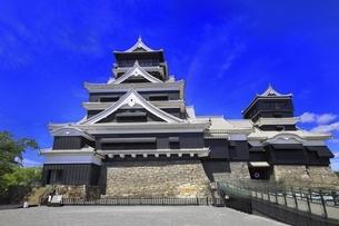 熊本城 天守閣の写真素材 [FYI04916447]
