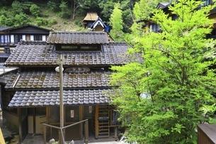 黒川温泉発祥の湯 地蔵湯の写真素材 [FYI04916524]
