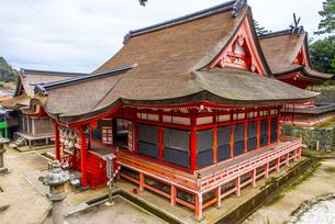 日御碕神社の写真素材 [FYI04916560]