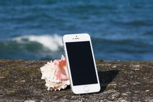 スマートフォンと貝殻の写真素材 [FYI04916619]