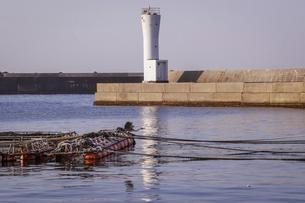 海辺の風景 港の繋留ロープを渡る海鳥の写真素材 [FYI04916681]
