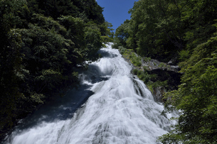 奥日光 夏の湯滝の写真素材 [FYI04917187]