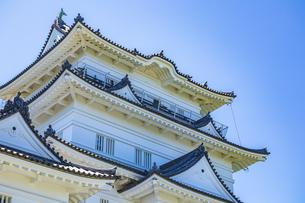 快晴の青空に映える小田原城天守閣の写真素材 [FYI04917199]
