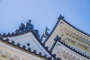 快晴の青空に映える小田原城天守閣の写真素材 [FYI04917201]