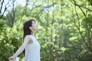 森の中でリラックスする若い日本人女性の写真素材 [FYI04917367]