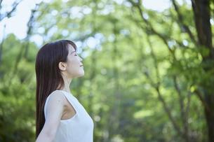 森の中でリラックスする若い日本人女性の写真素材 [FYI04917368]